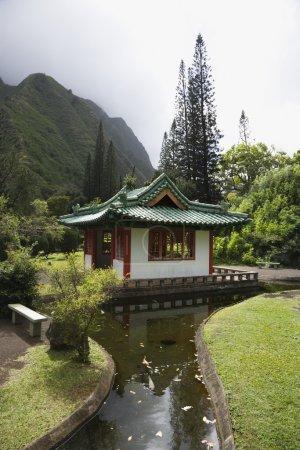 Streamm leading to pagoda.