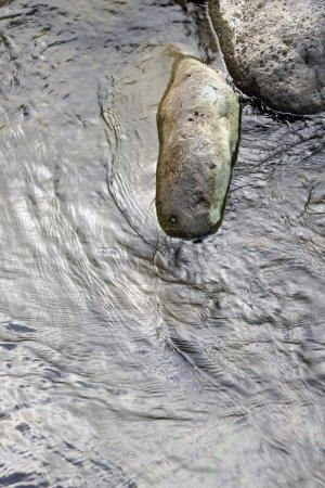 Rocks in water.