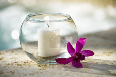 Candle and orchid.