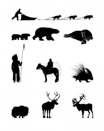 Winter Silhouettes of animals, sled dogs and the I...