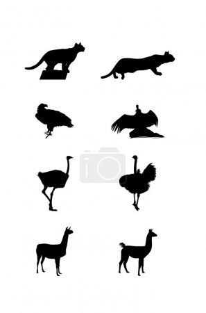 Foto de Imágenes y siluetas negras de animales salvajes de Sudamérica sobre un fondo blanco - Imagen libre de derechos