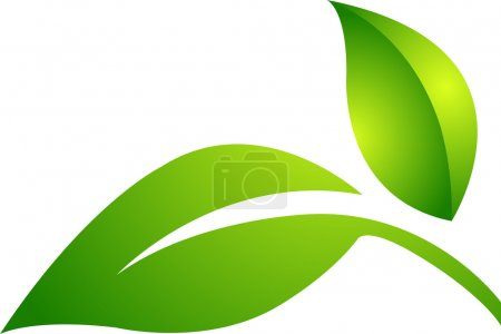 Two leaf logo