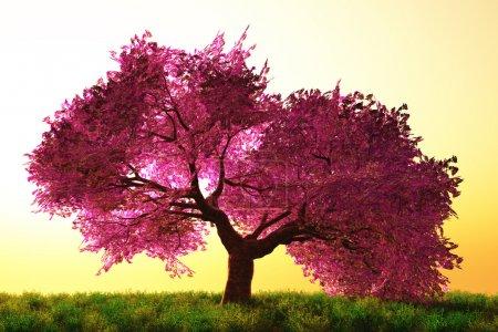 Photo pour Mystérieux arbre de fleurs de cerisier dessin animé rendu 3D - image libre de droit