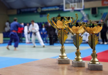 Youth Judo competition.