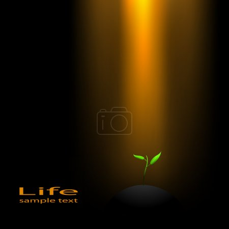 Illustration for Ray of light and a young sprout. Vector. - Royalty Free Image