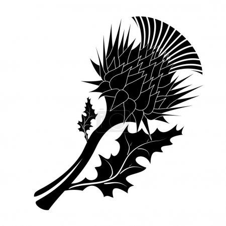 Decorative vector thistle