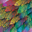 Seamless background of exotic colorful feathers, c...