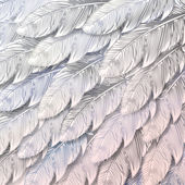 Seamless background of white feathers close up