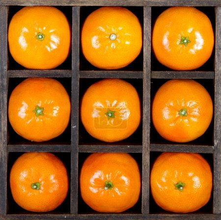 Photo for Oranges or clementines arranged in a box - Royalty Free Image