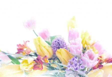 Photo for Collage postcard background mix from the 8 March spring flowers. Isolated on white - Royalty Free Image