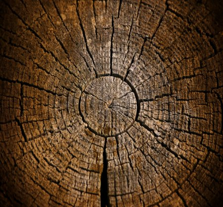 Photo for Dark weathered stump wooden texture; abstract grunge background - Royalty Free Image