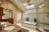 Modern master bath with skylight