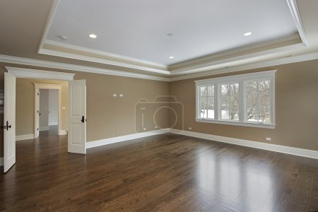 Master bath with tray ceiling