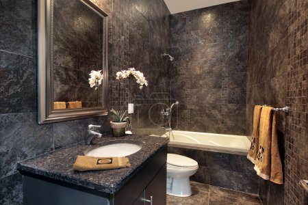 Powder room with black granite walls