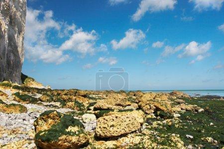 Blue ocean and cliffs