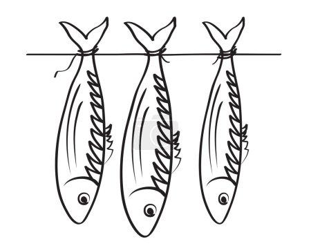 Sea roach. Stockfish