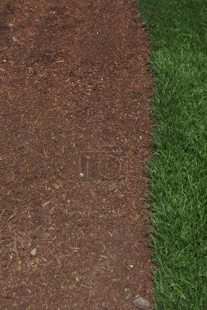 Grass border Dirt Background