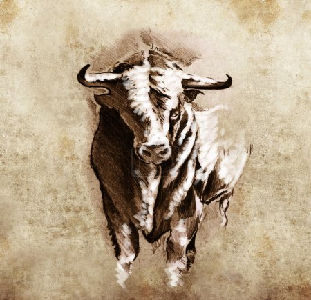 Sketch of tattoo art, spanish bull, dangerous bull with beaked h