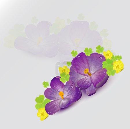 Illustration pour Crocus et buttercups - image libre de droit