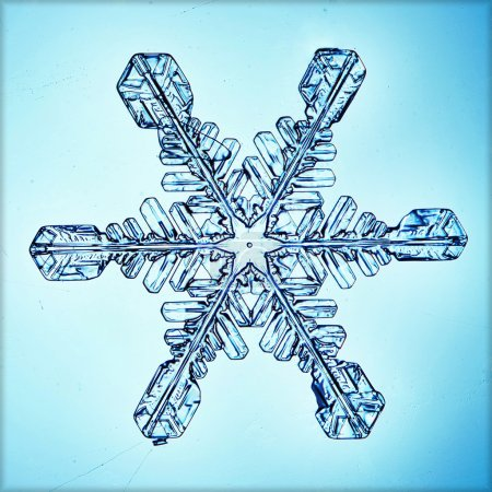 Photo pour Cristal de glace flocon macro - image libre de droit