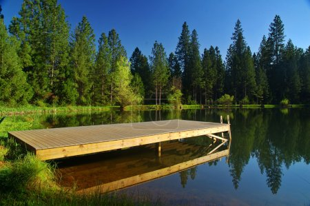 Springtime lakeshore