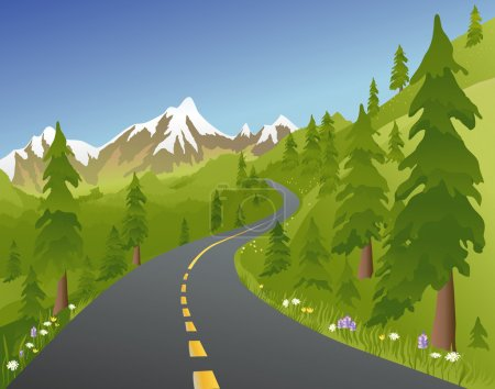 Summer Mountain Road