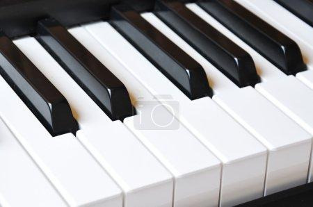 """Photo pour Clés de piano ; """"Le piano est un monstre qui grogne quand vous touchez ses dents """" - image libre de droit"""