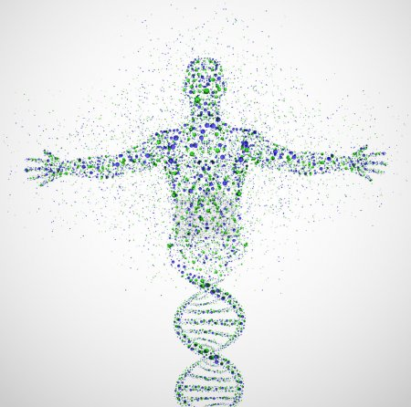 Photo for Abstract model of man of DNA molecule. Eps 10 - Royalty Free Image
