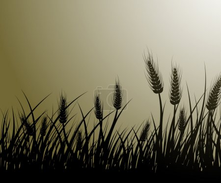 Illustration for Vector image of wheat field - Royalty Free Image