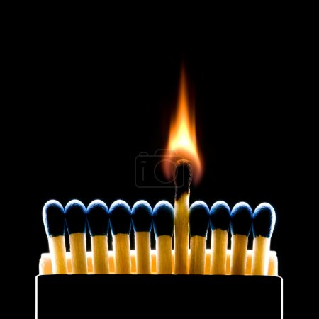 Photo for Many dark blue matches on a black background (one match burns). - Royalty Free Image