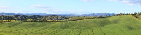 Tuscany, panorama landscape, farm, green fields, cypress trees,