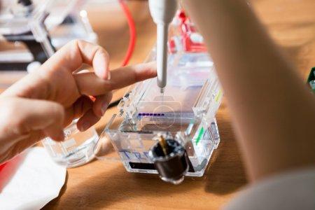 Photo pour Chargement de l'ADN prélevé dans une cellule électrophorétique. Ça fait partie de la procédure de séparation ADN. Profondeur de champ faible, focalisation sur les échantillons . - image libre de droit