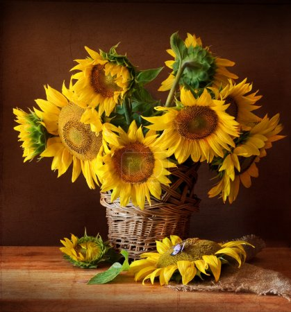 Photo for Still Life with Sunflower and Butterfly - Royalty Free Image