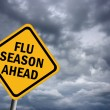 Flu season ahead illustrated sign...