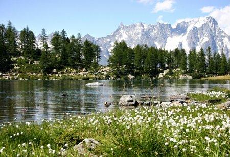 Photo pour Lac Arpy par une journée ensoleillée d'été avec la dent de Géant au loin - image libre de droit