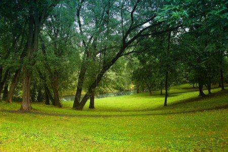 Photo pour Belle vue de la clairière bois et rivière - image libre de droit