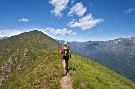 Trekking in the Alps