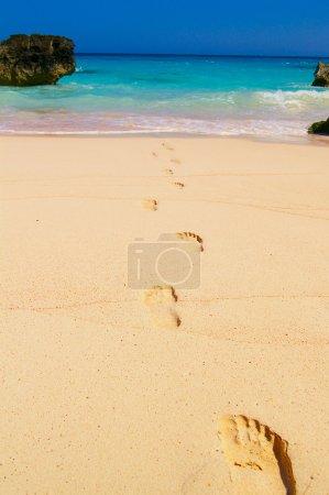 Photo pour Empreintes dans le sable de la plage, menant à l'eau, Bermudes - image libre de droit