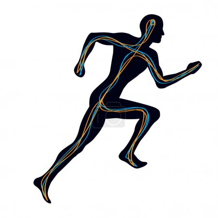 Human Nervous System - Man Running
