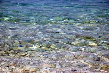 Underwater pebble texture