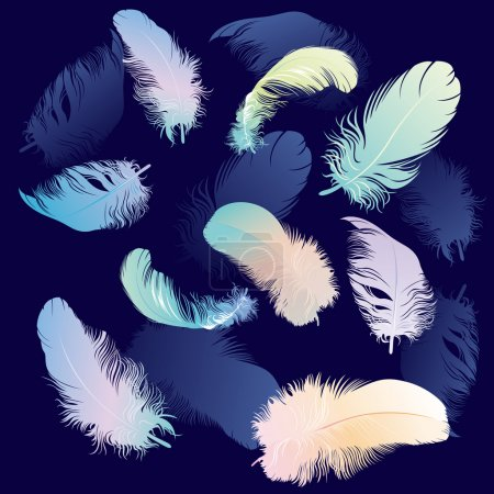 Colored Feather Set