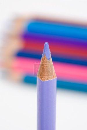 Photo pour Un crayon violet sur un fond de nombreuses couleurs - image libre de droit