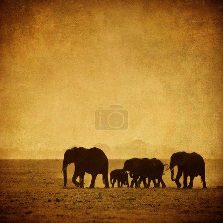 Photo pour Famille d'éléphants, amboseli, kenya - image libre de droit