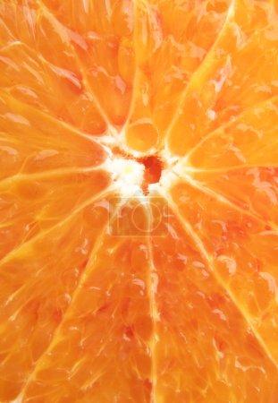 Photo for Orange background - slice of orange close-up - Royalty Free Image