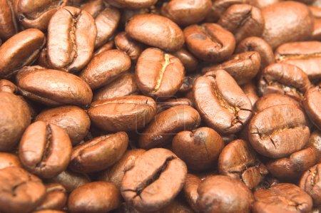 Photo pour Grains de café fond - image libre de droit