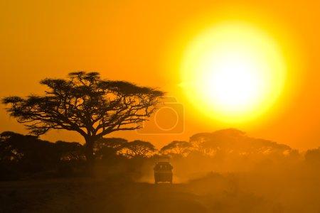 Photo pour Safari jeep conduite à travers la savane au coucher du soleil - image libre de droit