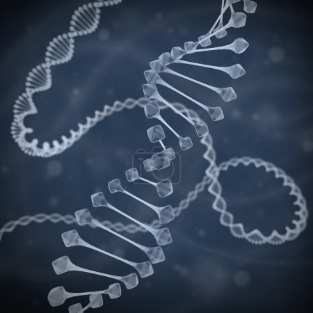DNA 3d illustration