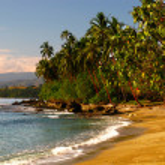 A sand beach and tropical jungle on the coast of G...