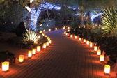 Path lit by luminaries after dark