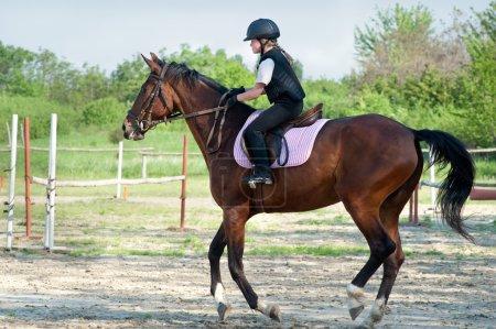 Photo pour Jeune fille sur un cheval - image libre de droit